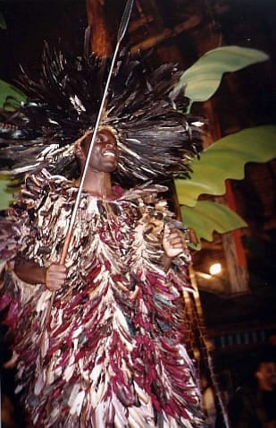 Feather costume from Cameroon